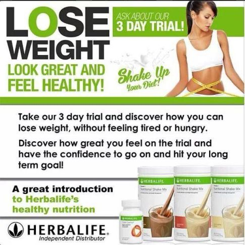 How many herbalife shakes a day to lose weight
